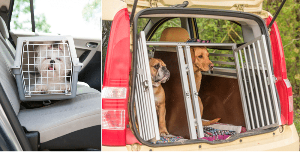 How do you secure a dog crate in a van to go on a long drive?